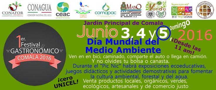 Día del Medio Ambiente, en el marco del Festival Gastronómico Comala 2016. A partir de las 4 pm; durante el pic nic, organizaremos diferentes juegos y dinámicas demostrativas para difundir la cultura ambiental en general y muy en particular la cultura del agua, y la forestal.