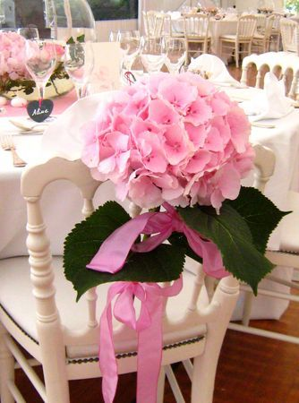 25 best ideas about pink hydrangea on pinterest pink