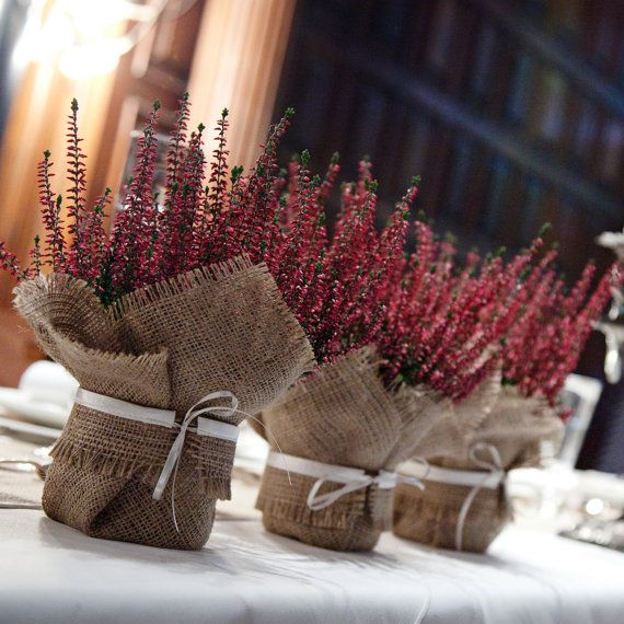 Burlap wedding decoration - plants as a centrepiece, A finishing touch for pot plants, harmonise your wedding decorations by wrapping plants in this burlap wrap trimmed with satin. This plant wrap can harmonise your wedding table centrepieces, buy small pots from your garden centre and use these wraps to cover the pot. This is a great solution to filling your table with flowers without spending a fortune. You could also use these for favours, what could be nicer than taking a wrapped plant…