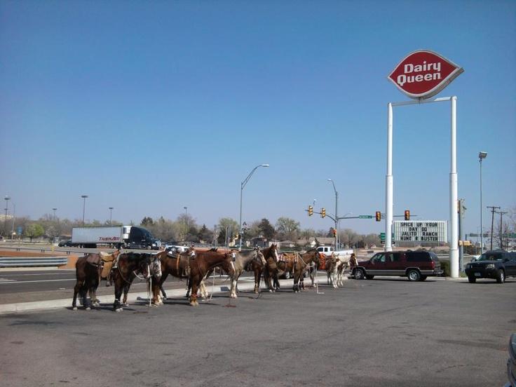 Amarillo Tx. DQ. horses like ice cream too!   Texas, just ...