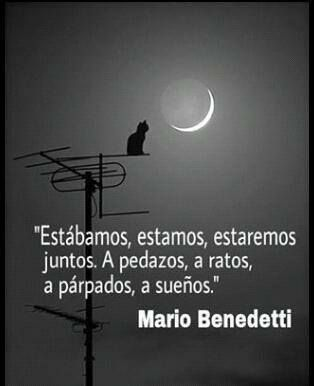 Buenas noches / good night