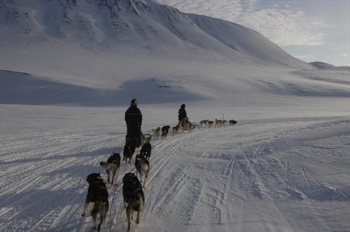 Dog sledding trip to the ice cave - Basecamp Spitsbergen (Svalbard, Norway)