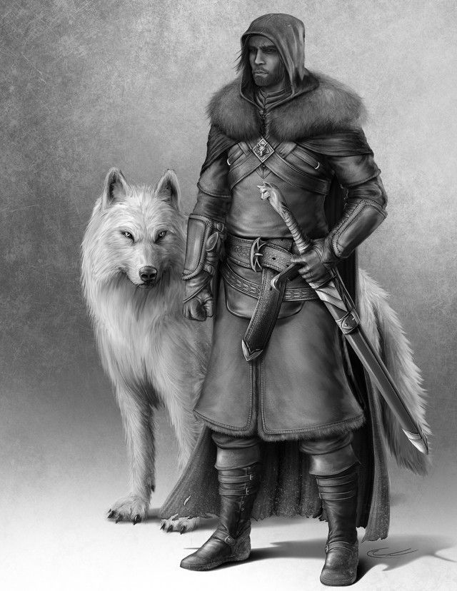 Lord Snow by Sktchwlkr
