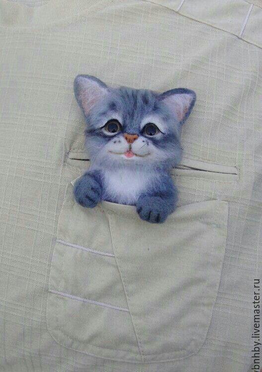 Gato fieltro
