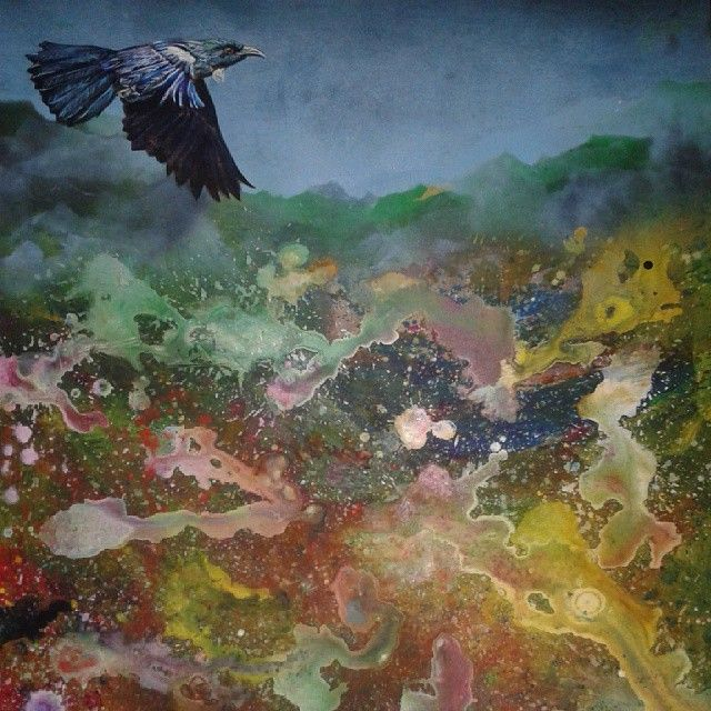Tui over primordia. Jamie Larnach 2015 by JamieLarnach. Limited edition prints available. NZ$200 only 25 prints made.