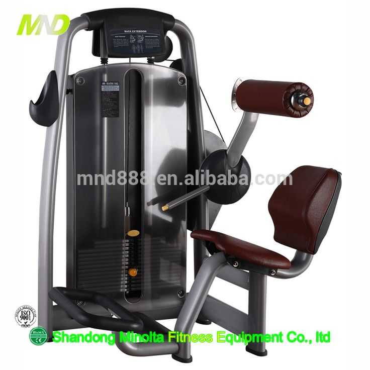 Lower Back Commercial Gym Equipment Club Machine New Design Fitness Gym Equipment Popular Commercial Exercise Machine