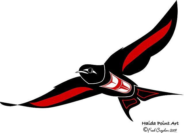 Haida Swallow