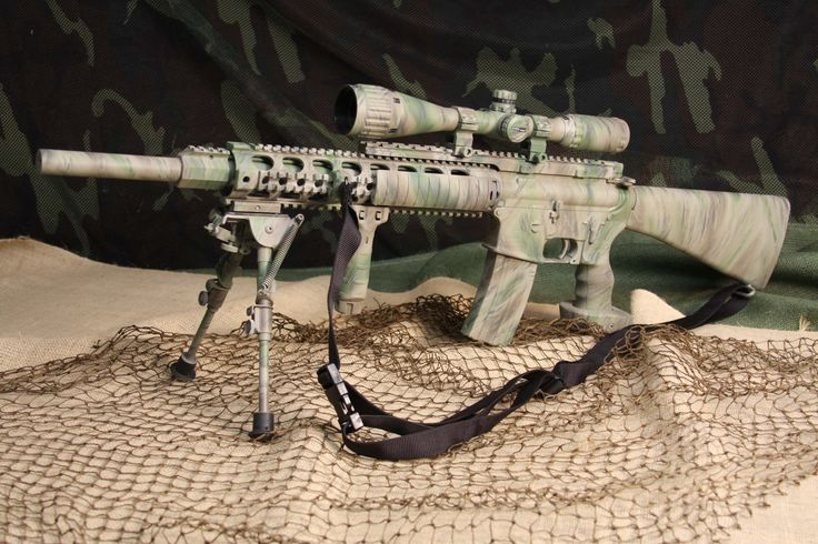 "Image detail for -... AR-15 in CDD ""Your Underbrush"" - Picture: Bushmaster AR-15 in Your"