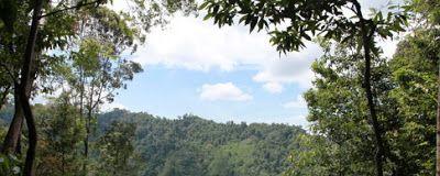 Trekking & Rafting Bukit Lawang - Tangkahan (Gunung Leuser National Park)