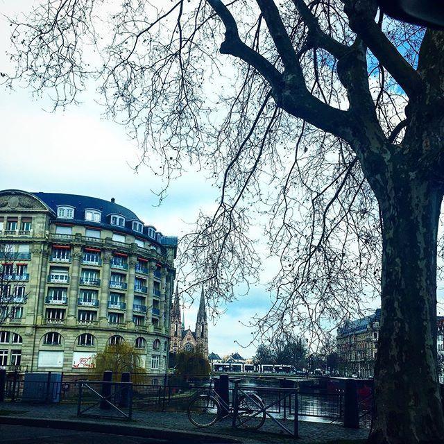 Day in Strasbourg #fco #francecommunity #ストラスブール #教会 #自転車 #bike #冬 #france🇫🇷 #フランス #francia #frankreich #프랑스 #prancis #frankrijk #فرانسه #frança #франция #ฝรั่งเศส #fransa #pháp #visitfrance #jaimelafrance