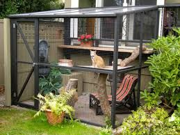 Image result for catio
