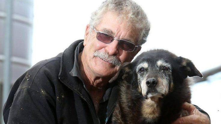 Maggie, the 'world's oldest dog,' dies at 30