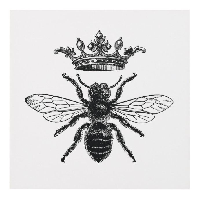 Matte wall panel with vintage queen bee