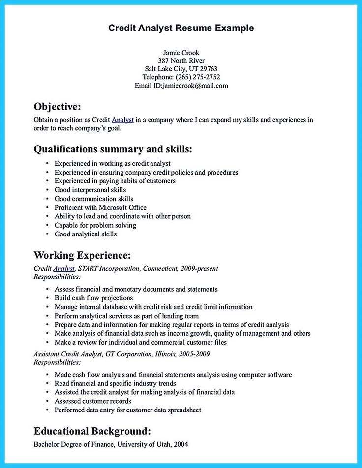 Resume Sample Senior Web Developer (   resumecompanion - resume for financial analyst