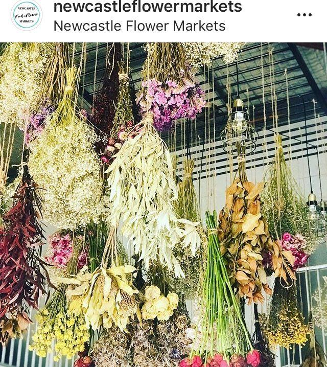 Drying Out Flowers Dried Flowers Flowers Flower Market