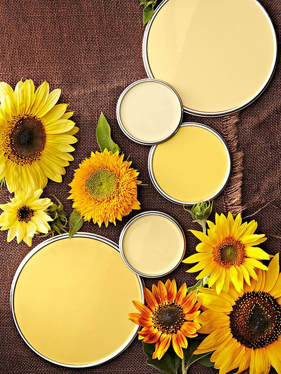 These yellow paint colors range from the lightest of butter creams to the richest of maple golds.