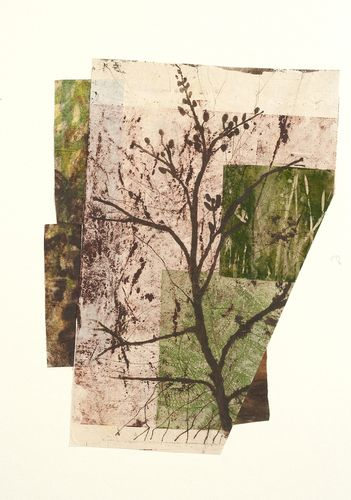 "Paula Zinsmeister, ""Sapling"", woodblock, monoprint, soft ground etching, intaglio, xante, collage, 20:h x 15""w"
