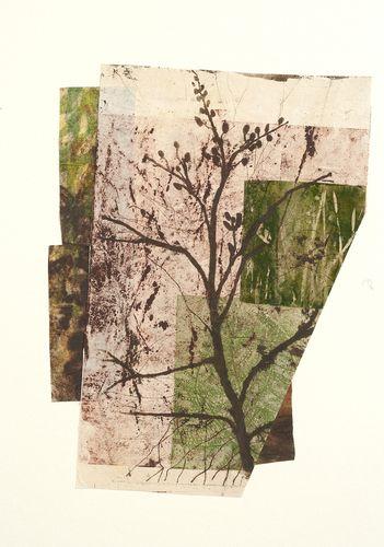 "Paula Zinsmeister, ""Sapling"", woodblock, monoprint, soft ground etching, intaglio, xante, collage, 20:h x 15""w"