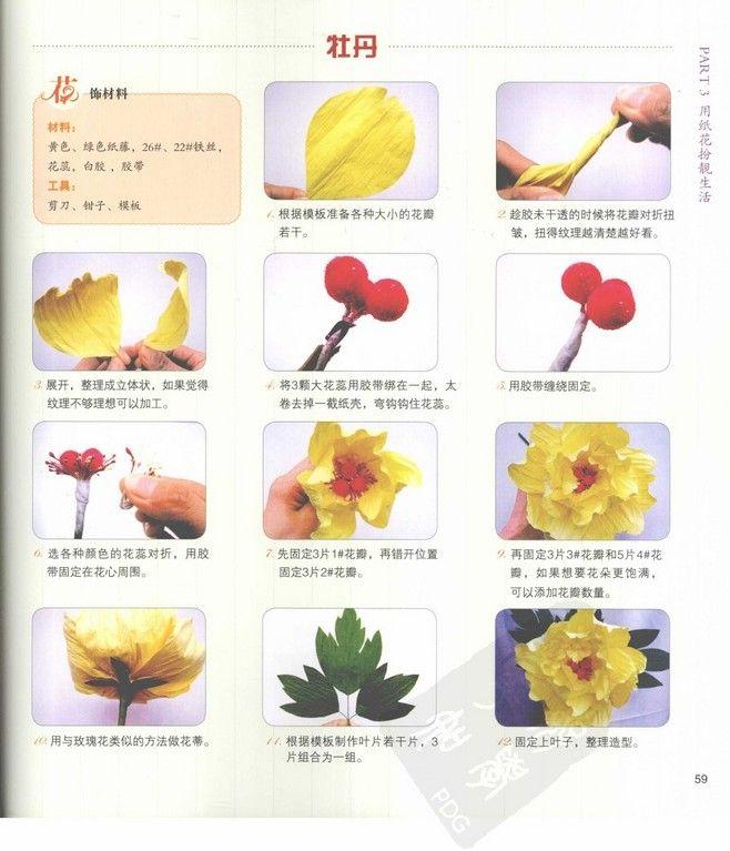 纸藤花-牡丹