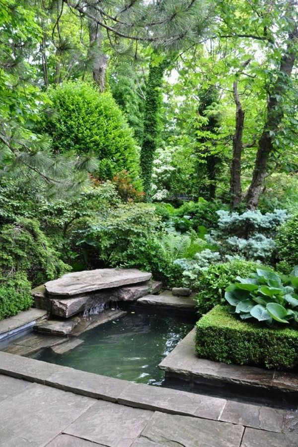 Teich und grüne pflanzen   idee für gartengestaltung   wasser im ...