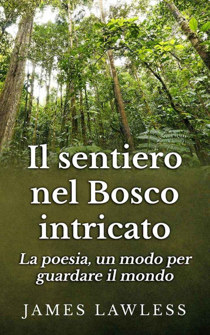 Amazon: Il Sentiero Nel Bosco Intricato (italian Edition) Ebook: James