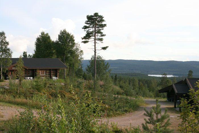 Fattigskogen,  Malungs finnmark  i Dalarna