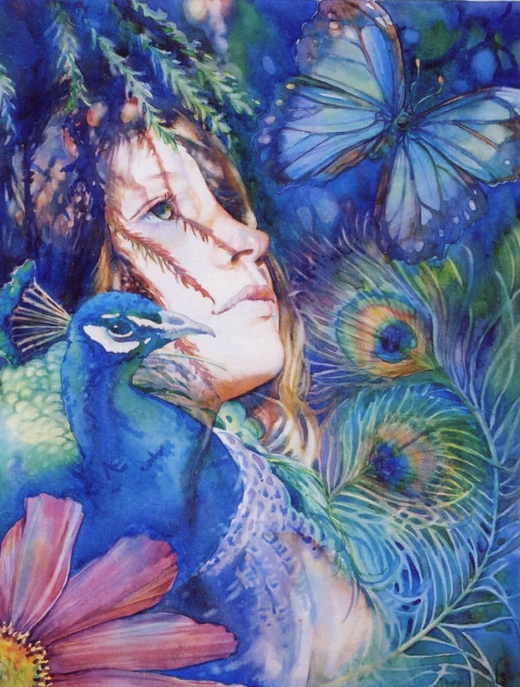 jeannie vodden, butterfly and peacock artwork