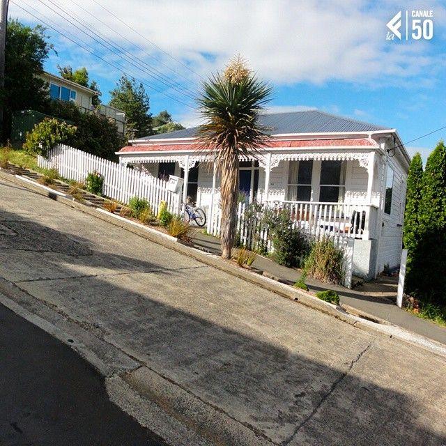 North East Valley, a nord-est del centro di #Dunedin. Si tratta di una breve strada rettilinea lunga poco meno di 350 metri, situata a est della valle di #LindsayCreek, a lato del promontorio di Signal Hill, che Passa da 30 metri sul livello del mare a 100 metri sul livello del mare.