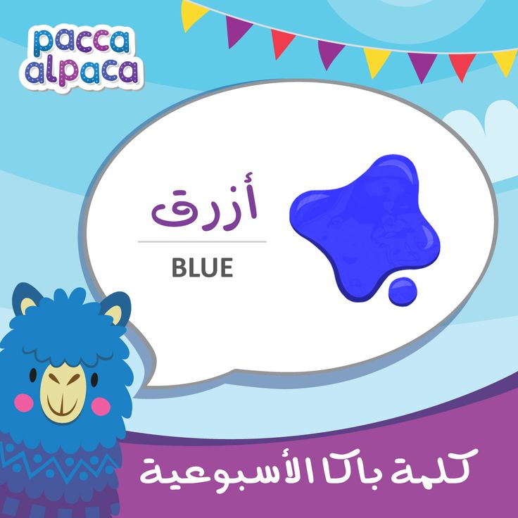 This week Pacca learns how to say blue in Arabic!