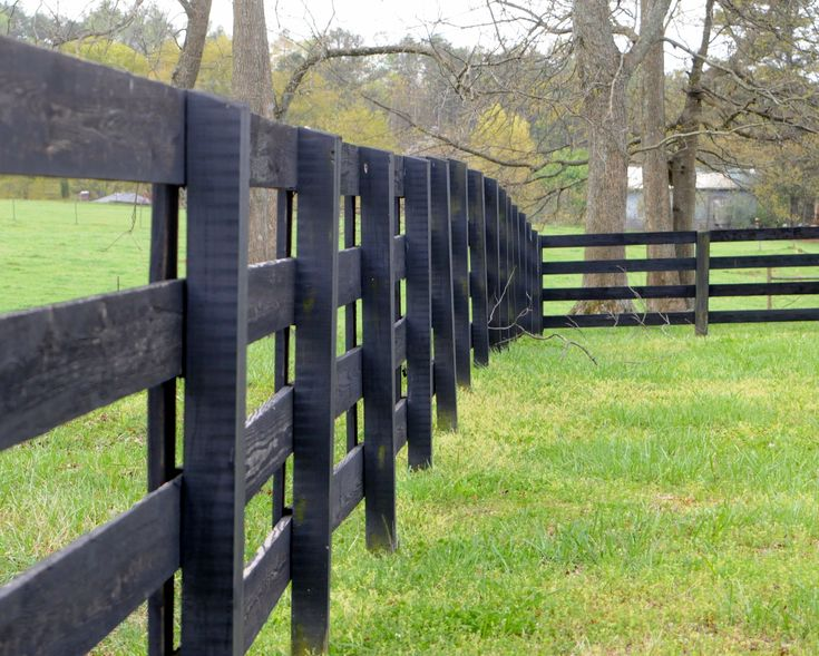 black fences great against green fields