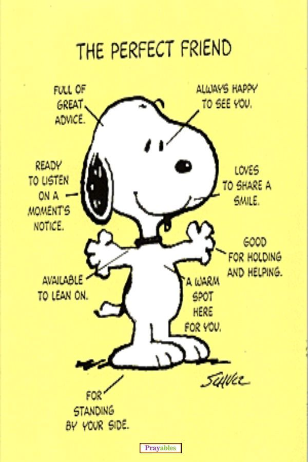 Love Snoopy, Love perfect friends, Love this fun friendship quiz - really! http://www.beliefnet.com/Love-Family/Quiz/What-Type-of-Friend-Are-You.aspx