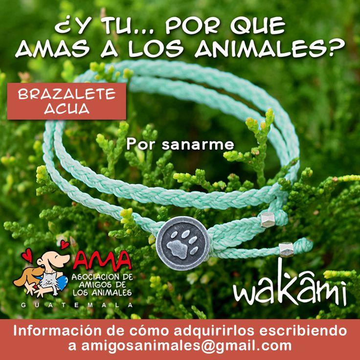 YA TENEMOS LA SEGUNDA EDICIÓN DE LOS BRAZALETES WAKAMI! ... ¡Por amor a los animales!  ¿Ya tienes el tuyo? Tenemos varios colores, cada uno con significado diferente: amarillo, azul, beige, coral, crema, zapote, gris, menta, naranja, verde y vino. Puedes comprarlos en línea en HELPING FRIENDS (https://helpingfriends-3dcart-net.3dcartstores.com/).