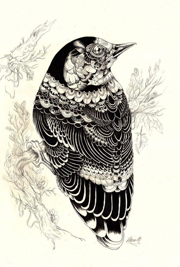 Intricate bird drawing