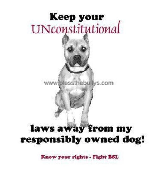 Amen! Breed discrimination is no different than racial discrimination.. It's called profiling.. And it's WRONG people!