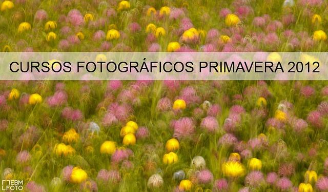 Cursos fotográficos para esta primavera by ebmfoto.com