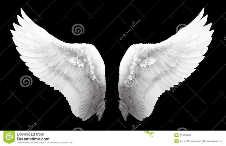 Angel Wings Royalty Free Stock Photos - Image: 3213848 ...
