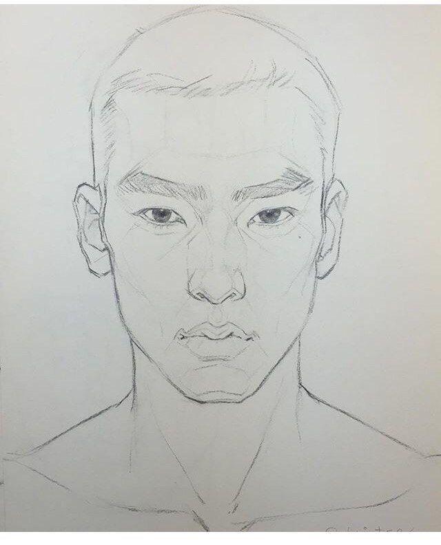 Artstation Blindspot Alter Native Anatomy For Drawing Female