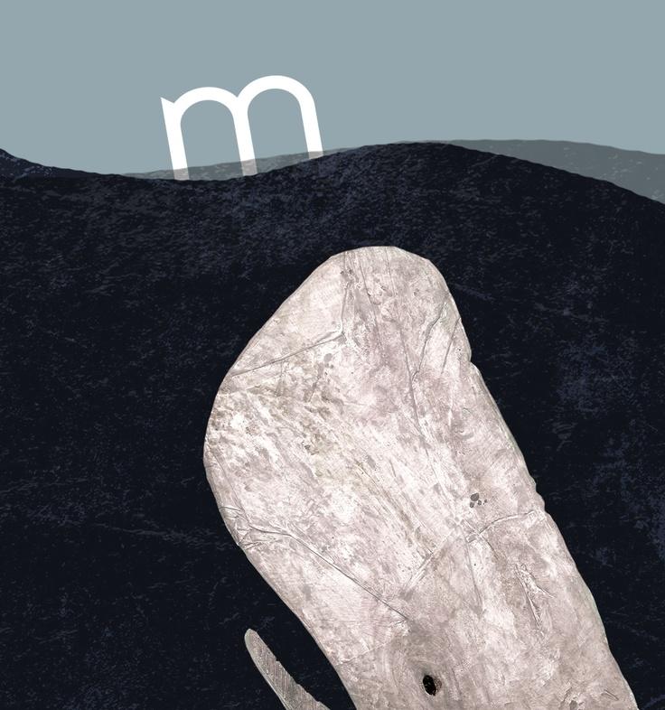Album ilustrado, Moby Dick. AlvaroGarcía