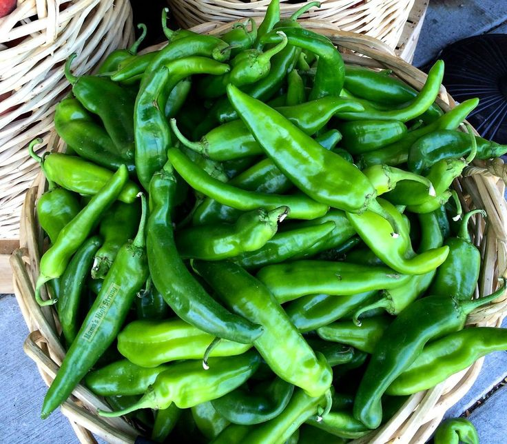 I'm going to grow some Anaheim Green Chile peppers next spring! I'm getting my gmo-free pepper seeds at: www.sandiaseed.com!