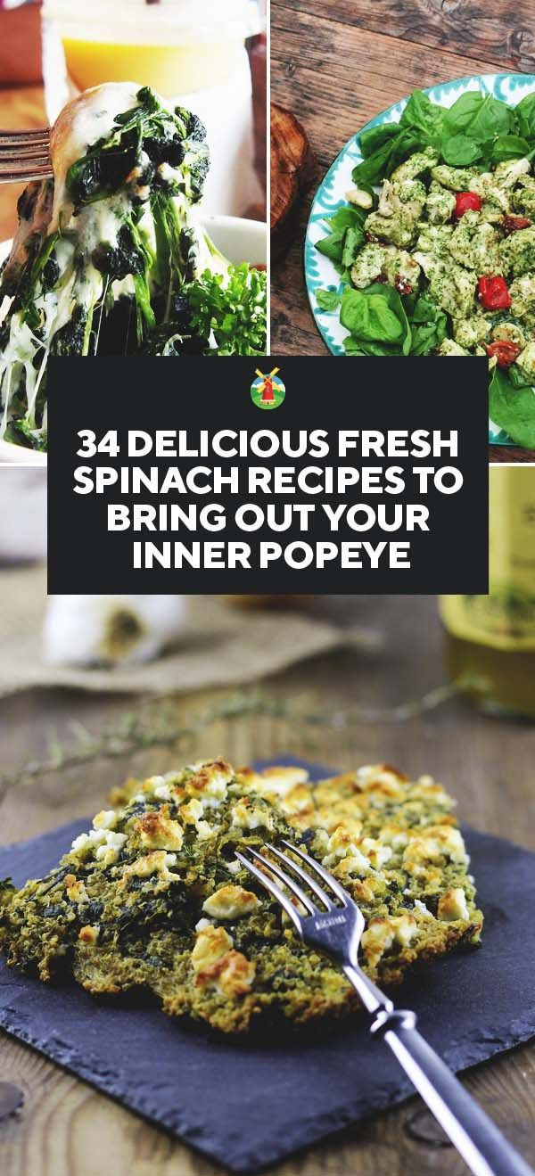 Fresh spinach is an inexpensive easy green to incorporate into many dishes to increase their nutritional value. Renowned for its health benefits, due to the high iron content, if you want restored energy, increased vitality, and improved blood quality, then try these spinach recipes for a range of meals to choose from.