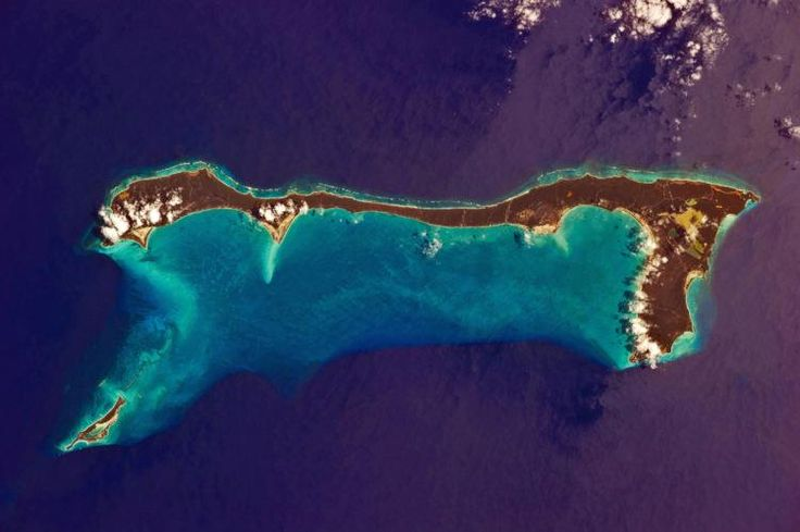 The Bahamas Issues Travel Advisory Against Who? http://patriotupdate.com/the-bahamas-issues-travel-advisory-against-who/    www.HeroesOfTheUSA.com #veteransday #veterans #armylife #armywife #armygirlfriend #armybrat #armywives #policelivesmatter #policewife #soldierlife #freedomisntfree #usarmy #usmilitary #militarywife #militaryfamily #patriot #hero #instafamous #neverforget #respect #semperfi #moh #dad #father #happybday #airforce #followme #goarmy #coastguard #soldiers