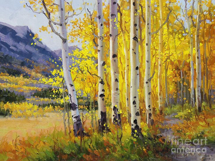 28 Best Aspen Oil Paintings Images On Pinterest Art