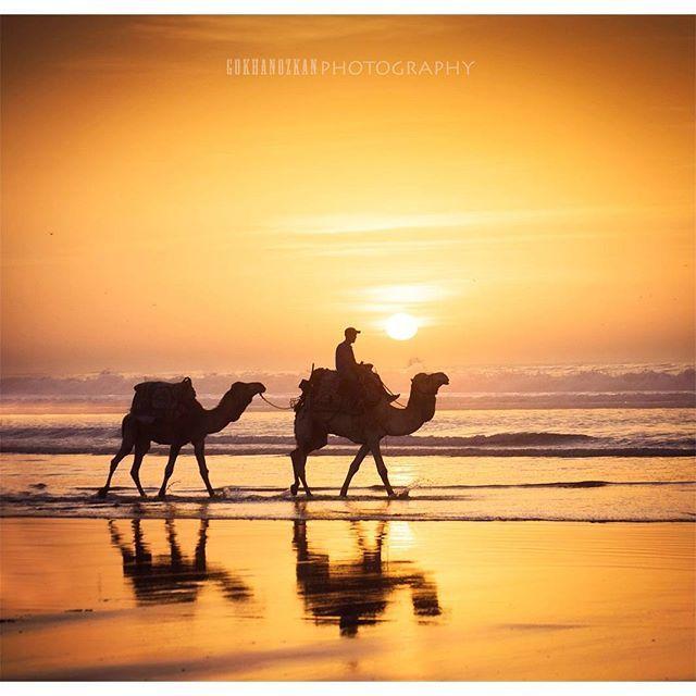 今回はInstagramのタグ数を参考にモロッコの人気観光地をランキング形式でご紹介します。これさえ見ておけばモロッコで行くべき王道観光地を抑えることができますよ。(※タグ件数取得日:2月13日)