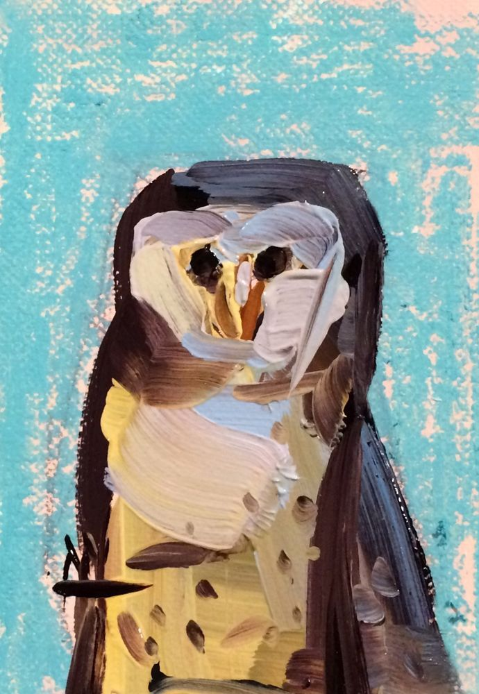 Barn Owl no. 2 original bird oil painting Angela Moulton ACEO Art #Impressionism