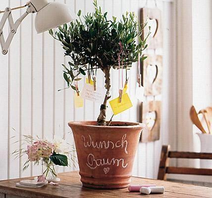 Dekoration und Geschenk in Einem: der selbst dekorierte Wunschbaum. Wir haben ein Olivenbäumchen beim Gärtner besorgt und in einen Tontopf gestellt. Der Topf...