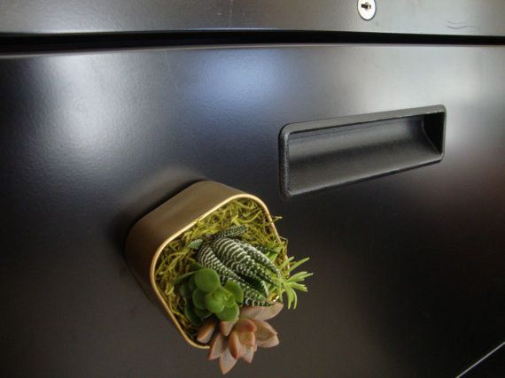 If you don't have room for a big plant, try one of these adorable mini-succulent magnets. | 54 Ways To Make Your Cubicle Suck Less