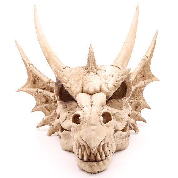 Dragon Skull Home Decorative Fantasy Gothic by getgiftideas