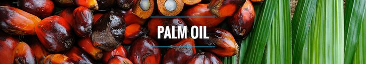 Palm oil is the most widely used edible oil in the world and an ingredient in a variety of PepsiCo food products. Sustainably-sourced palm oil can provide important benefits. It contributes to the economic growth of many developing countries and improvement in the livelihoods of farmers. Oil palm trees yield four to ten times more oil than other leading oil crops on the same amount of land, so palm oil may offer environmental advantages.