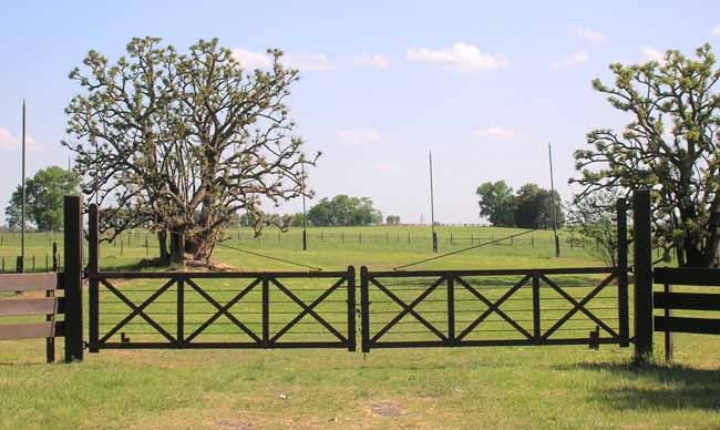 Curated farm gates and fences ideas by levinarose