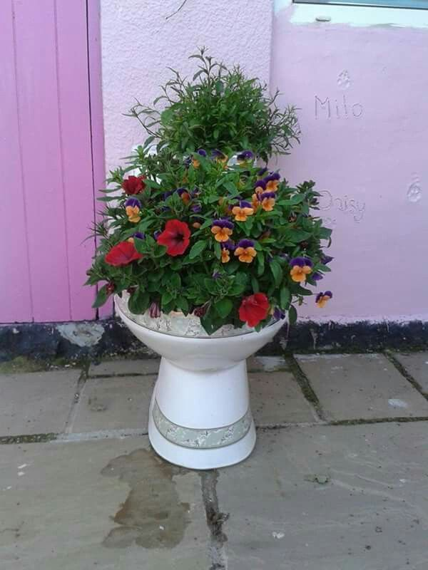 Chinese toilet planter 13 best Toilet Gardens